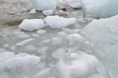 Glaciar i Chile Royaltyfri Fotografi
