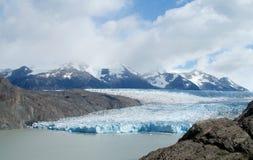 Glaciar i Patagonia Royaltyfri Bild