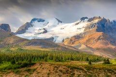 Glaciar Jasper National Park de Athabasca fotos de archivo libres de regalías