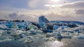 Glaciar lagun i Island Royaltyfri Foto