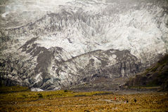 Glaciar masivo Imagen de archivo