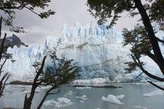 glaciar moreno perito Royaltyfri Bild
