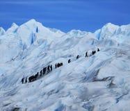 Glaciar Perito Moreno Duży lód & Mine Wycieczkuje wycieczki turysyczne, Santa Cruz Argentyna obrazy stock