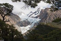 Glaciar Piedras Blancas,巴塔哥尼亚,阿根廷 免版税库存照片