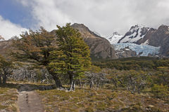 Glaciar Piedras Blancas, Patagonia, Argentina Fotografia Stock Libera da Diritti