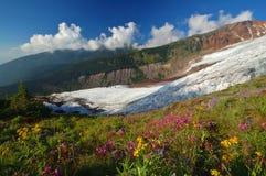 Glaciar poderoso en verano Fotos de archivo