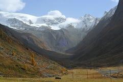Glaciation Fotos de archivo