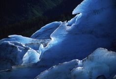 Glacier. Blue glacier ice with green forest in background Royalty Free Stock Photography