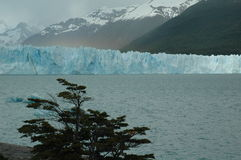 Glacier. Perito Moreno, glacier in Argentina stock photos