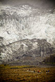 Glacier. People walking in front of massive glacier wall royalty free stock photography