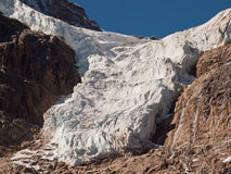 Glacier. On Mount Edith Cavell Royalty Free Stock Photos