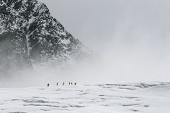 On the glacier Stock Photography