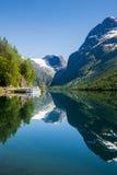 glacier Photo libre de droits