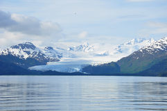 Glacier in Alaska receding from the sea Royalty Free Stock Image