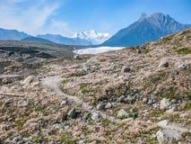 kennicott Glacier Alaska Royalty Free Stock Images
