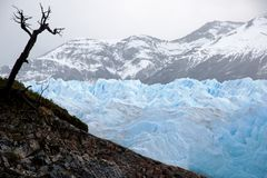 Glacier in the Andes Royalty Free Stock Images