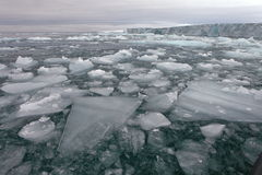 Glacier arctique Photo libre de droits