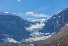 Glacier Athabasca Stock Images