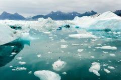 Glacier_Bay Στοκ Φωτογραφία