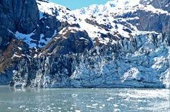 Glacier Bay Royalty Free Stock Images