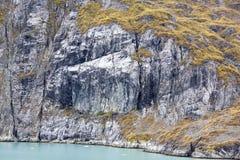 Glacier Bay Coast Stock Images