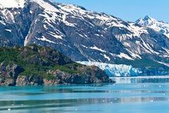 Glacier Bay Stock Photography