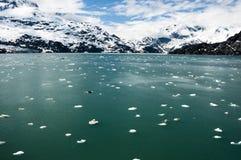 Glacier Bay National Park. Floating ice in Glacier Bay National Park, Alaska Royalty Free Stock Photo