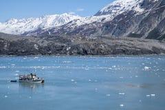 Glacier Bay National Park #5 Stock Photos