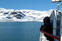 Glacier Bay Royalty Free Stock Photography