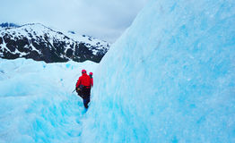Glacier and beautiful nature of Alaska, expedition Royalty Free Stock Image