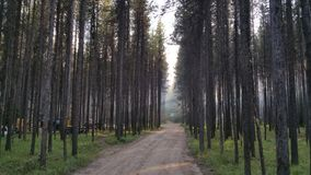 Glacier campground. Campground in Glacier National Park trees with smoke Royalty Free Stock Photo