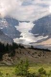 Glacier in Canada Stock Image