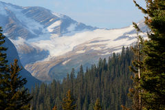 Glacier covers a mountaintop in Glacier National Park. Stock Photos