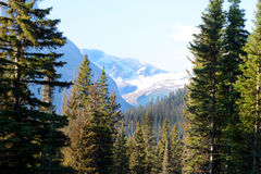 Glacier covers a mountaintop in Glacier National Park. Stock Photos