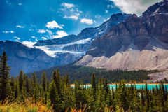 Glacier Crowfoot in striped mountains Royalty Free Stock Photo