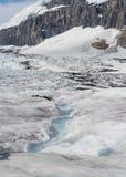 Glacier d'Athabasca avec le champ de glace de Colombie Photographie stock libre de droits
