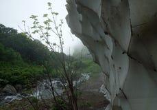 Glacier dans les montagnes 2 Photos libres de droits
