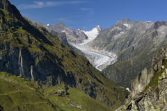 Glacier de Fiesch Photo libre de droits