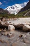 Glacier de Midui Photos libres de droits