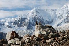 Glacier de Midui au Thibet Images stock