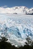 Glacier de Patagonia Images libres de droits