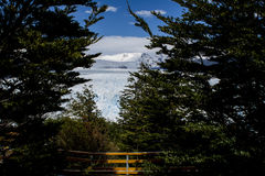 Glacier de Perito Moreno, EL Calafate, Argentine Image stock