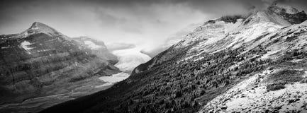 Glacier de Saskatchewan Images libres de droits