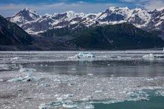 Glacier de vêlage Photos stock