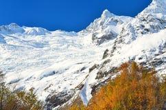 Glacier in Dombaj Stock Images