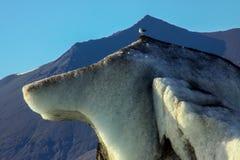 Glacier en Islande images stock