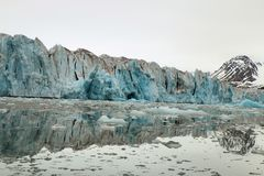 Glacier entering the ocean. Face of a glacier entering The Arctic Ocean stock photos