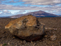 Glacier erratic and colorful wild flowers in Iceland Royalty Free Stock Photos