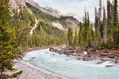 Glacier Fed Waters Flow From Takakkaw Falls in Canadian Rockies stock photography
