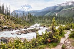 Glacier Fed Waters Flow From Takakkaw Falls in Canadian Rockies stock images